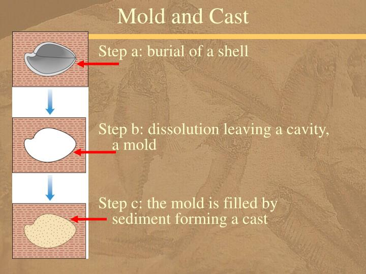 Mold and Cast
