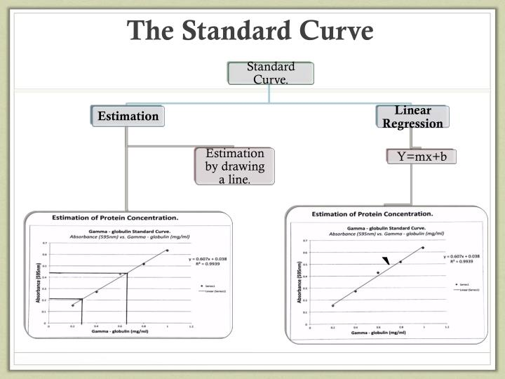The standard curve