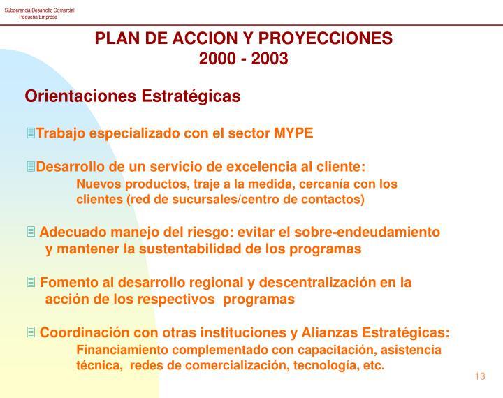 PLAN DE ACCION Y PROYECCIONES