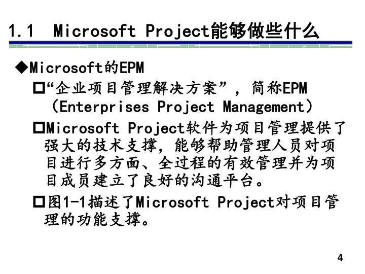 1.1  Microsoft Project