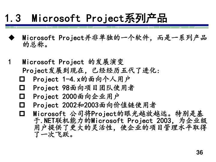 1.3  Microsoft Project
