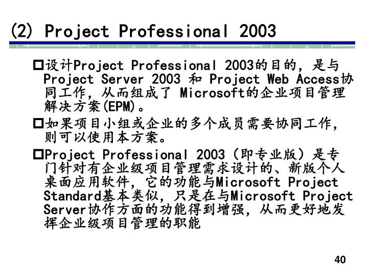 (2) Project Professional 2003