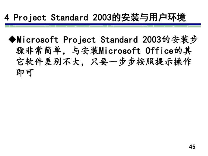 4 Project Standard 2003