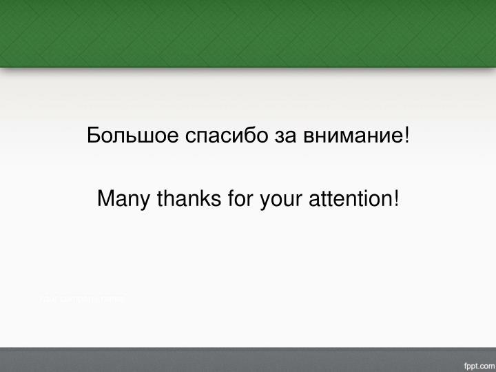 Большое спасибо за внимание