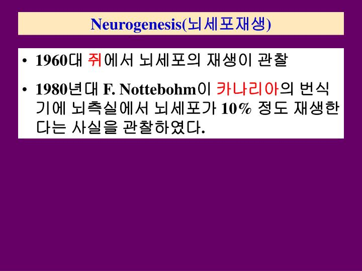 Neurogenesis(