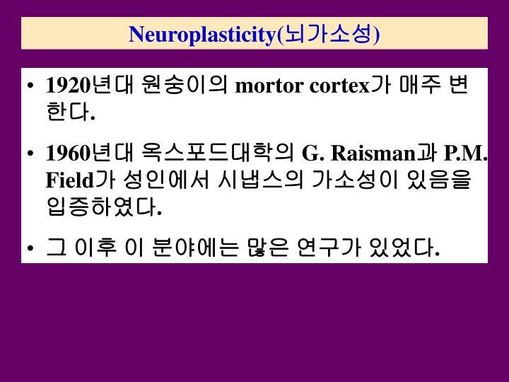 Neuroplasticity(