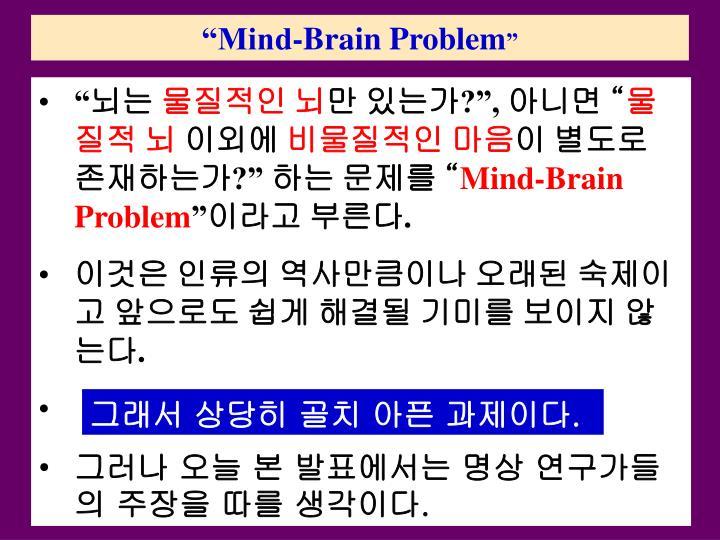 """Mind-Brain Problem"