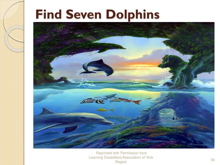 Find Seven Dolphins