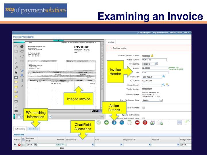 Examining an Invoice