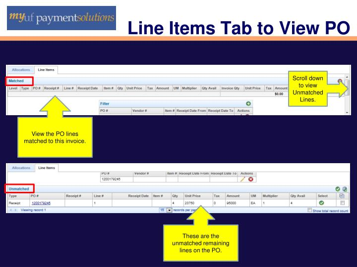 Line Items Tab to View PO