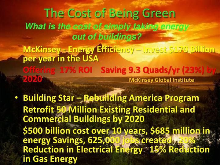 The Cost of Being Green