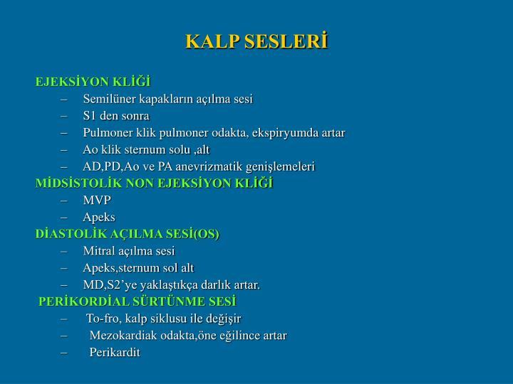 KALP SESLERİ