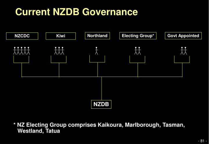 Current NZDB Governance
