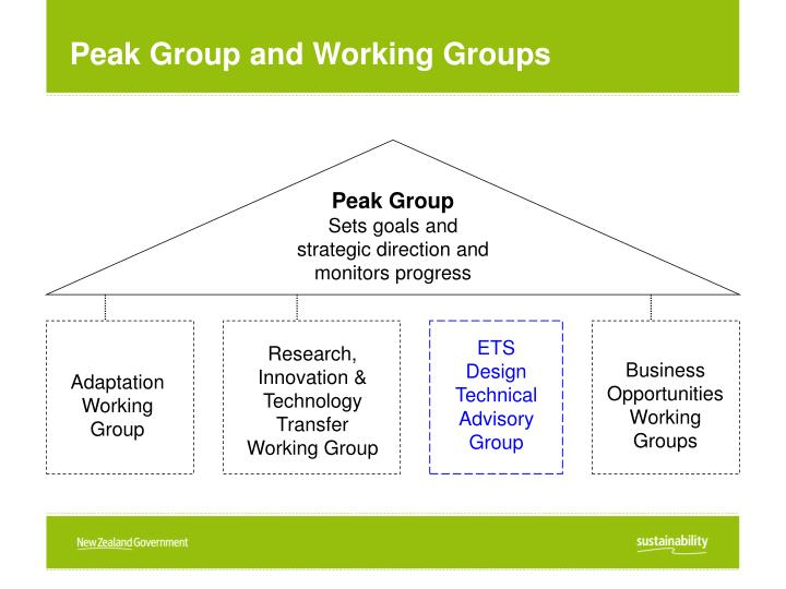 Peak Group and Working Groups
