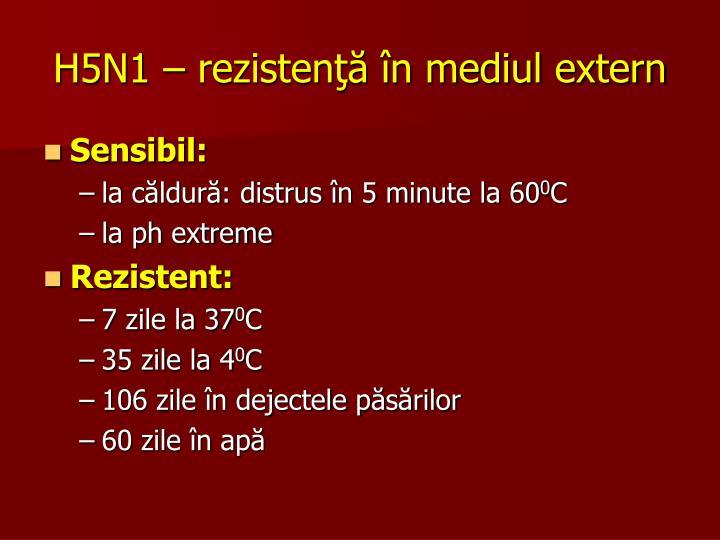 H5N1 – rezistenţă în mediul extern