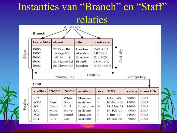"""Instanties van """"Branch"""" en """"Staff"""" relaties"""