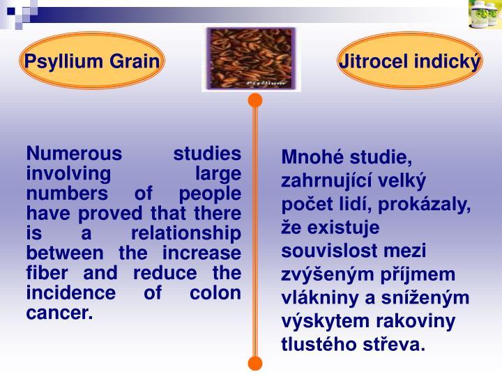 Psyllium Grain