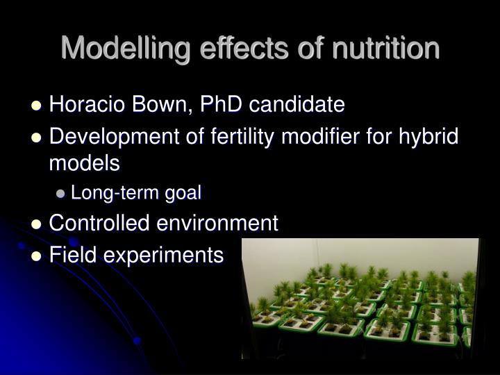 Modelling effects of nutrition