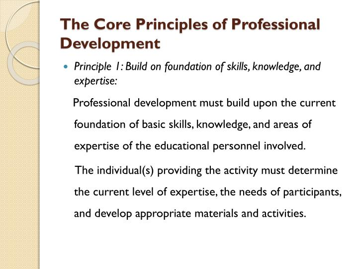 The Core Principles of Professional Development