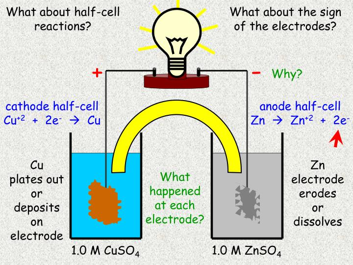What about half-cell reactions?