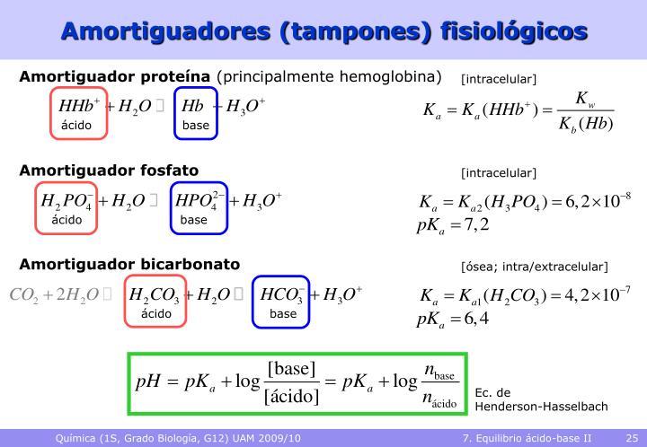 Amortiguadores (tampones) fisiológicos