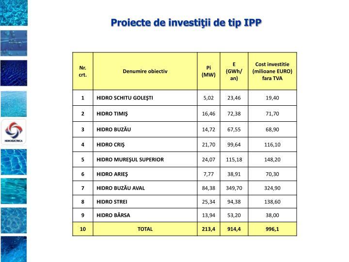 Proiecte de investiţii de tip IPP