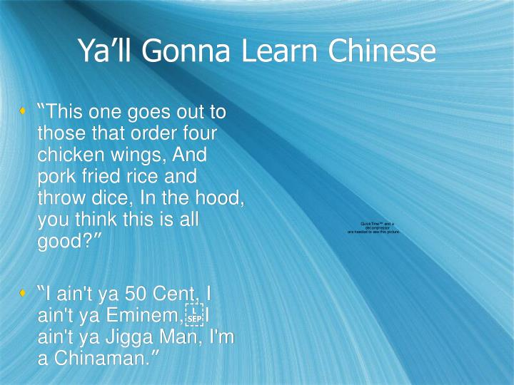 Ya'll Gonna Learn Chinese