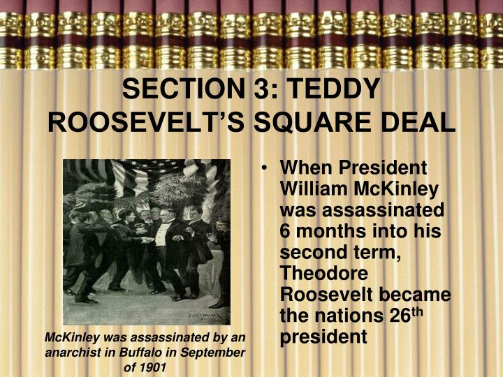SECTION 3: TEDDY ROOSEVELT'S SQUARE DEAL