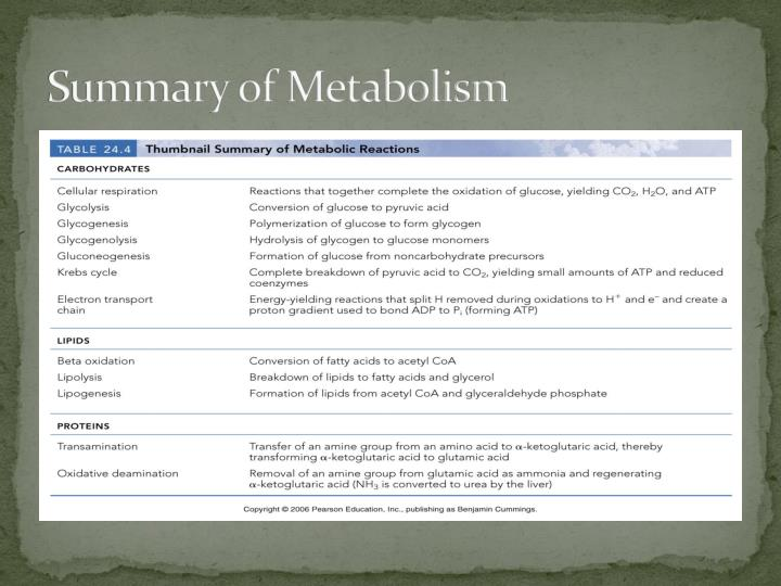 Summary of Metabolism
