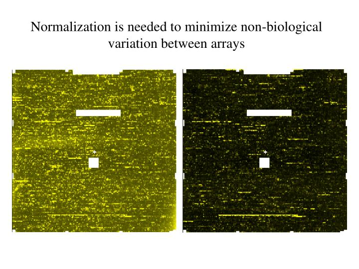 Normalization is needed to minimize non-biological variation between arrays