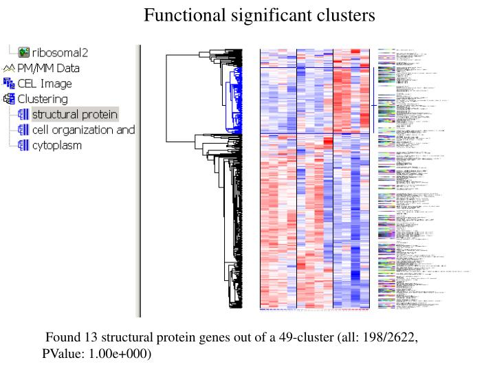 Functional significant clusters