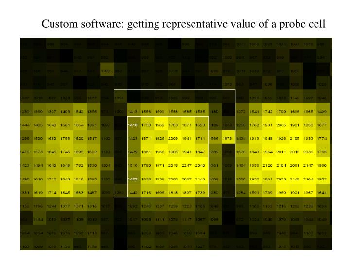 Custom software: getting representative value of a probe cell