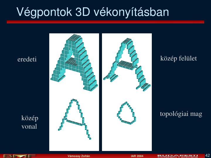 Végpontok 3D vékonyításban