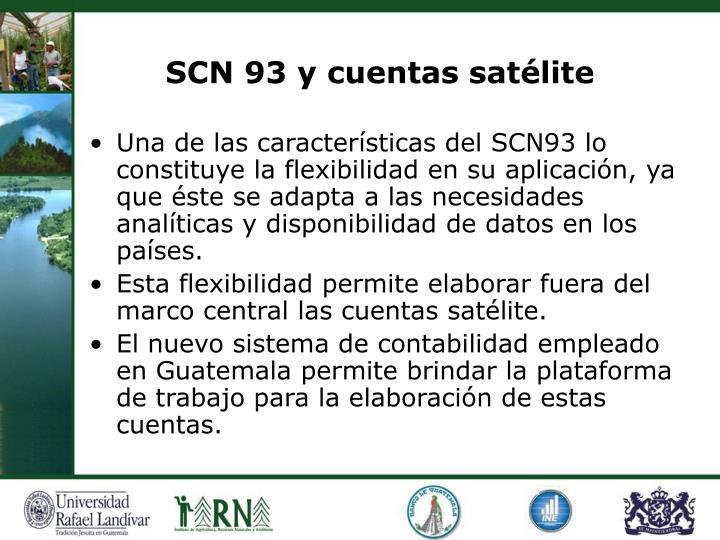 SCN 93 y cuentas satélite