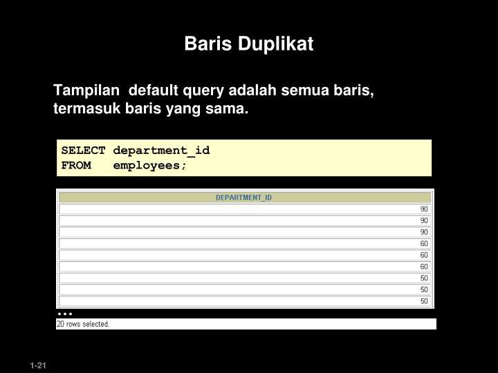 Baris Duplikat