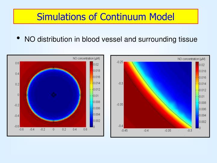Simulations of Continuum Model