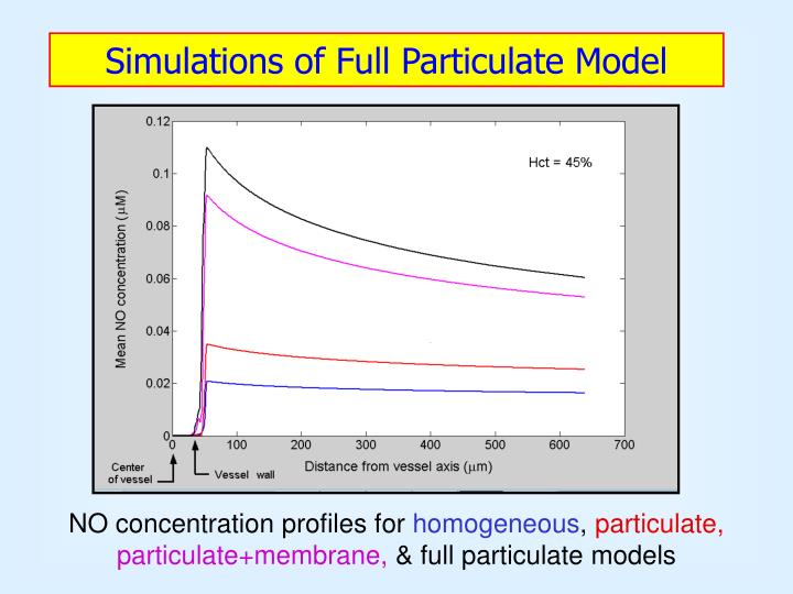 Simulations of Full Particulate Model