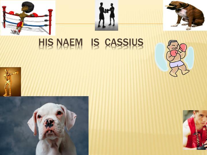 HIS NAEM   IS  CASSIUS