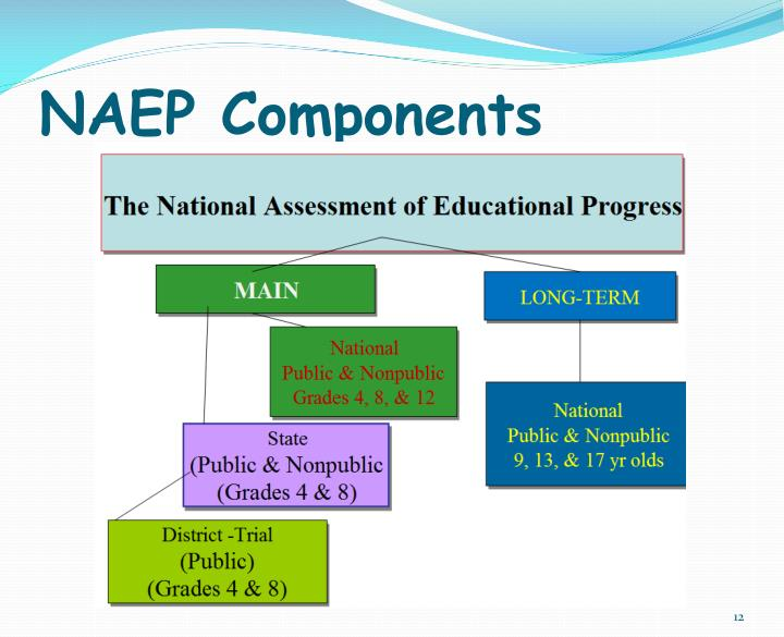 NAEP Components