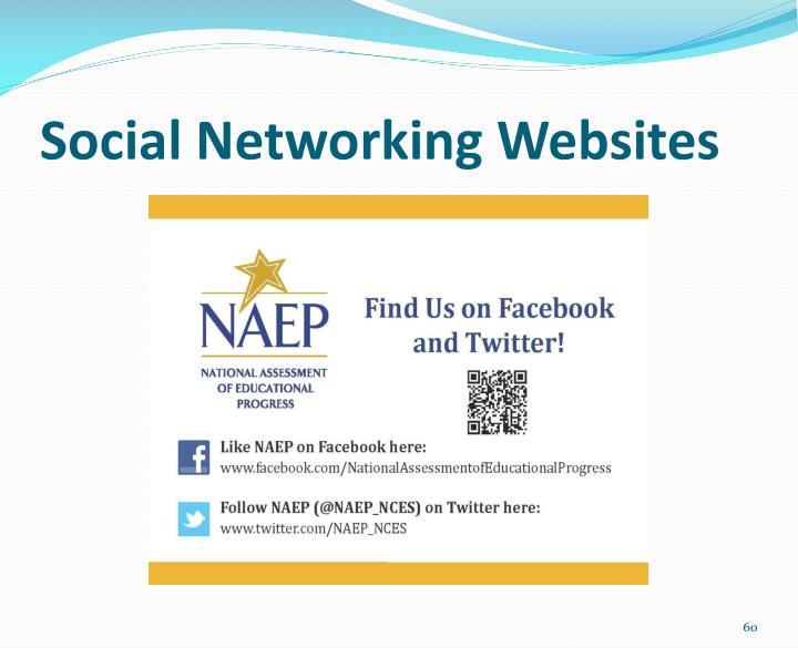 Social Networking Websites
