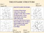 the dynamic structure