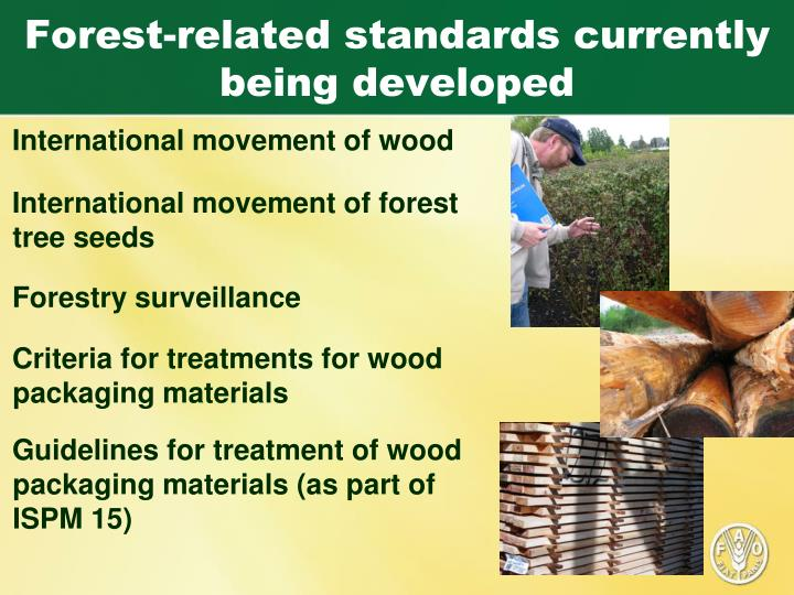 Forest-related standards currently being developed