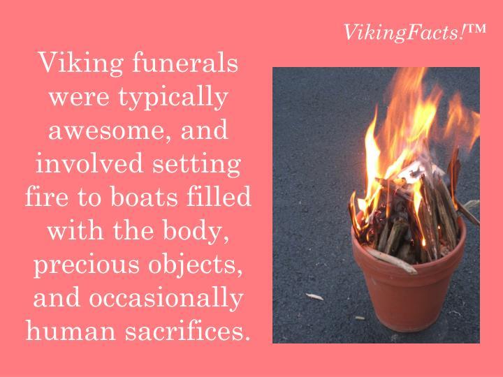 VikingFacts!™