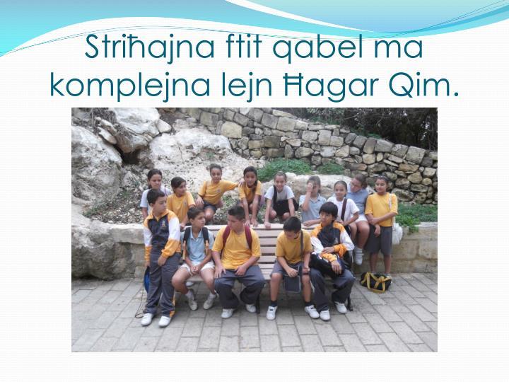 Striħajna
