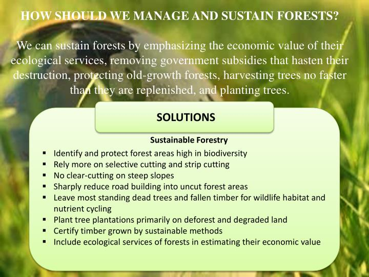 HOW SHOULD WE MANAGE AND SUSTAIN FORESTS?