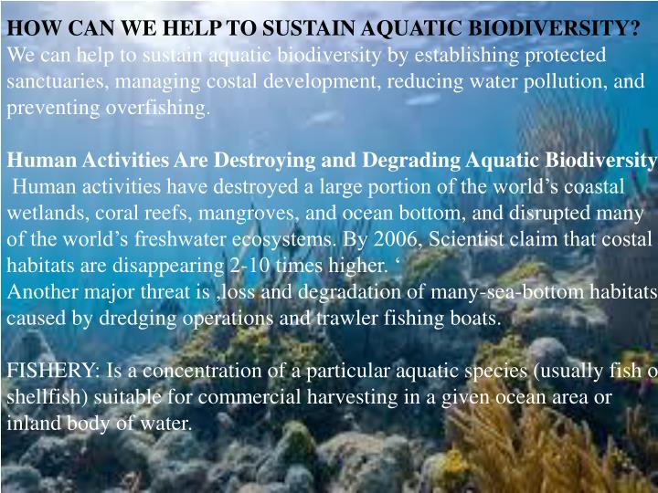 HOW CAN WE HELP TO SUSTAIN AQUATIC BIODIVERSITY?