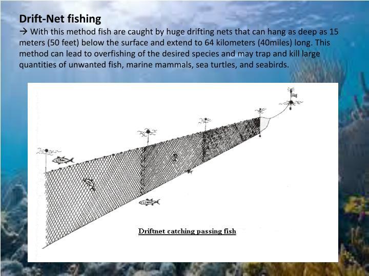 Drift-Net fishing