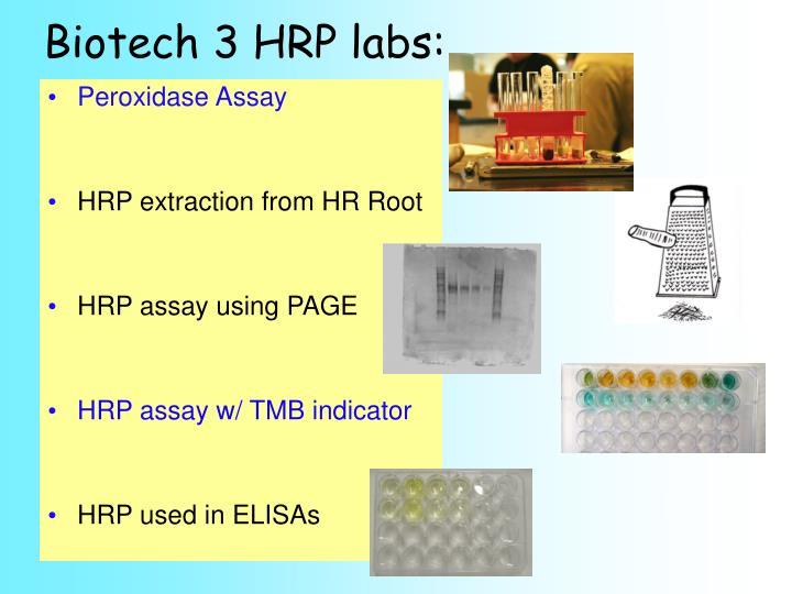 Biotech 3 HRP labs: