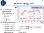 hadronic energy scale