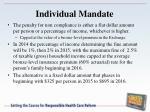 individual mandate1